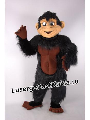 "Ростовая кукла ""Шимпанзе Хэм"""